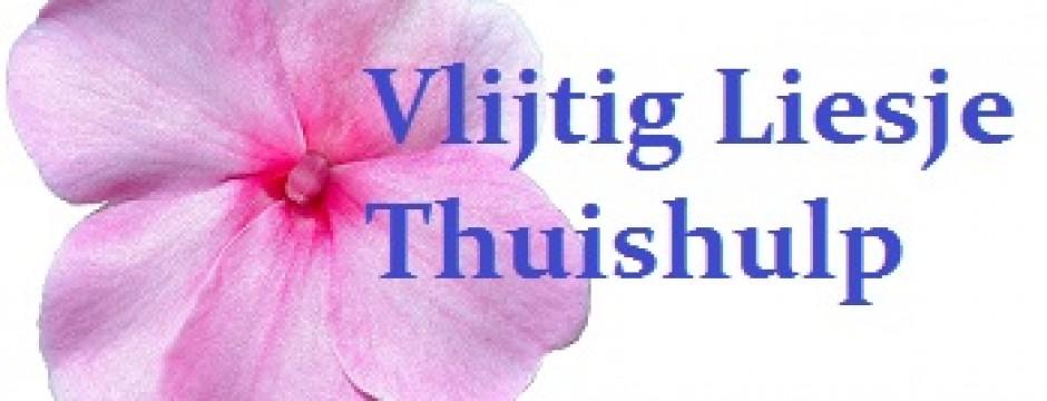 Vlijtig Liesje Thuishulp Dordrecht, Papendrecht, Sliedrecht, Zwijndrecht en omstreken